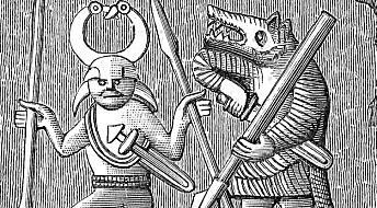 Rasende vikingkrigere kan ha vært i urte-rus