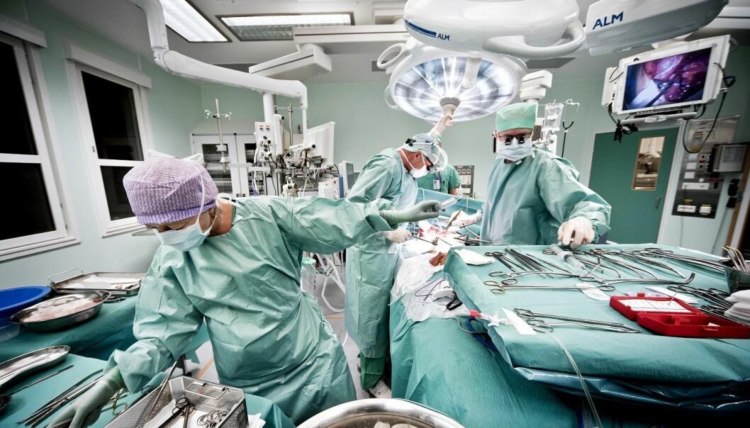 Alderen på organdonorer har økt over tid. Dette har ført til at flere sentre for transplantasjon har begynt å bruke organer fra utvalgte eldre donorer til levertransplantasjon. (Foto: Ram Gupta)
