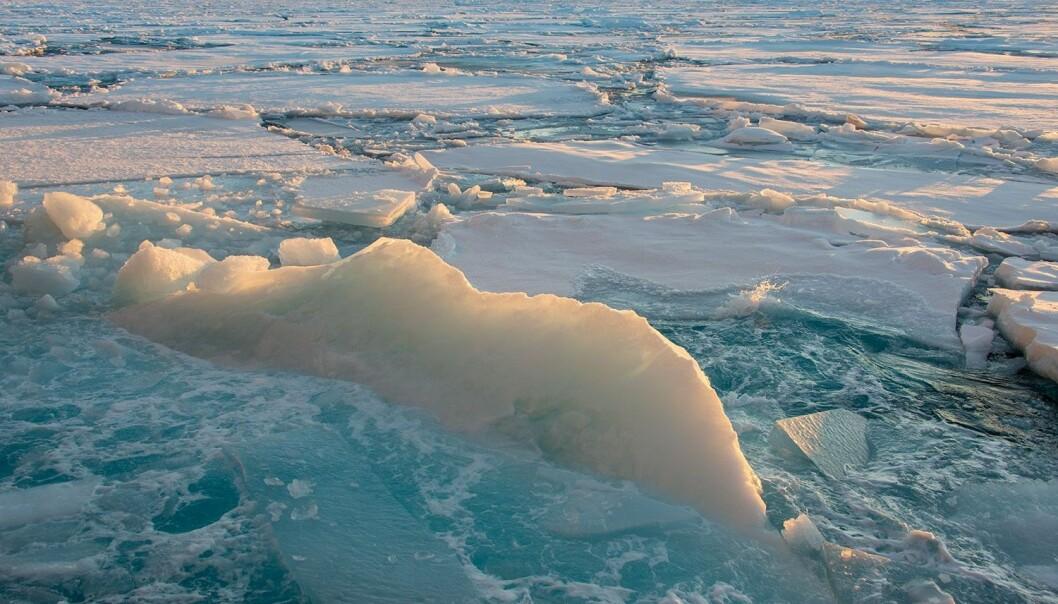 – Alle de gamle modellene for værvarsling i Arktis viste temperaturer mellom 5 og 15 grader for varmt, sier forsker Malte Müller. (Foto: Rudi Caeyers / UiT – Arven etter Nansen