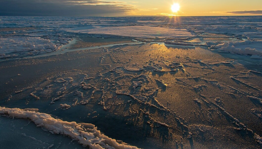 Sjøis i arktiske områder legger seg som et lag med frossent sjøvann som flyter på vannet. (Foto: Rudi Caeyers / UiT – Arven etter Nansen)