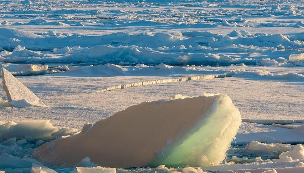 De daglige varslene av vær, hav, snø og is som du finner på Yr er resultater av detaljerte utregninger gjort av en superdatamaskin. (Foto: Rudi Caeyers / UiT – Arven etter Nansen)