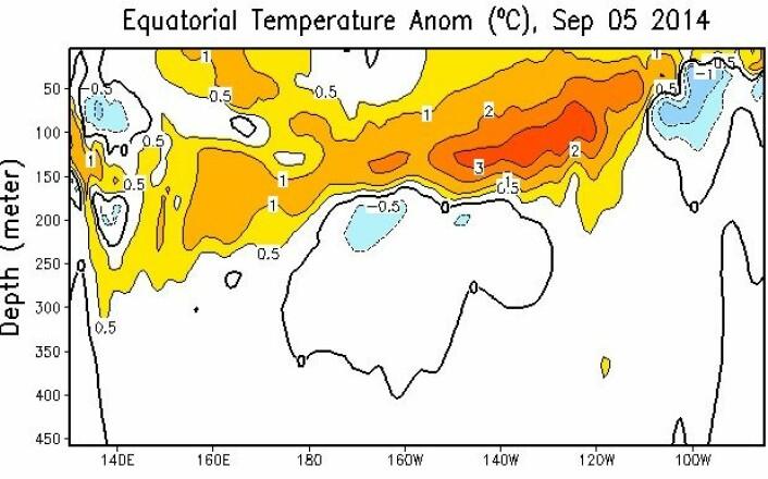 Ganske mye varmt vann under ekvatorlinjen i Stillehavet nå. Sannsynligvis vil det bli varmere overflatevann der utover i september og oktober. (Bilde: NOAA)