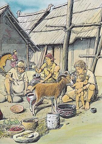 Kunstner Christian Bisig forestiller seg tutekoppen i bruk i bronsealderen. (Illustrasjon: Christian Bisig, Archäologie der Schweiz)