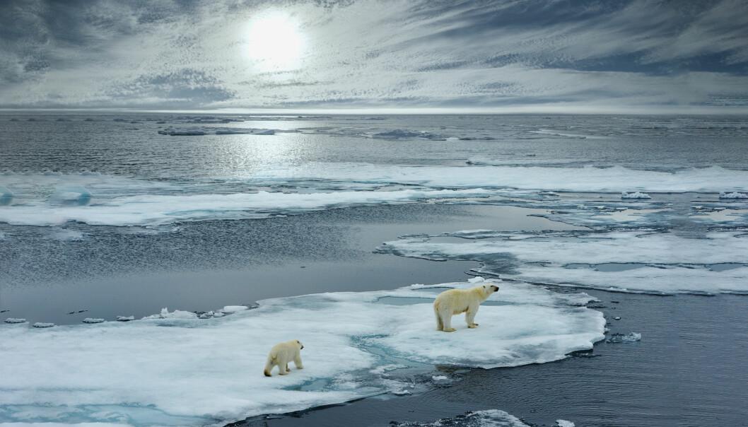 Det blir mindre is og snø over hele verden. (Foto: FloridaStock / Shutterstock / NTB scanpix)