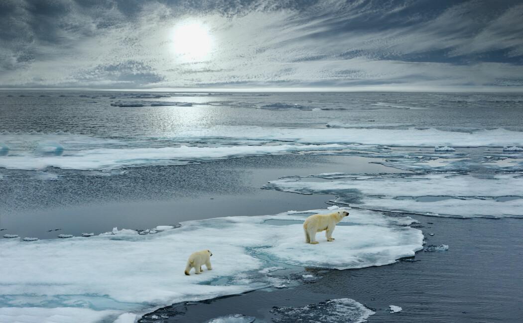 Klimarapport: Issmeltingen på Grønland og Antarktis kommer ikke til å stoppe. Det gjør at havet fortsetter å stige de neste århundrene.