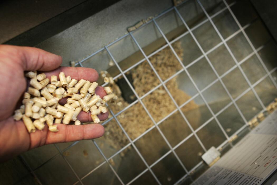 Pellets til en pelletskamin. Forskere mener det er mindre miljøvennlig å fyre med tre enn tidligere påstått. (Foto: Gorm Kallestad, NTB scanpix)