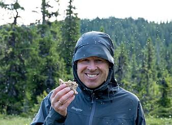 Daglig leder Terje Blindheim er omsvermet. Foto: Kim Abel/Naturarkivet