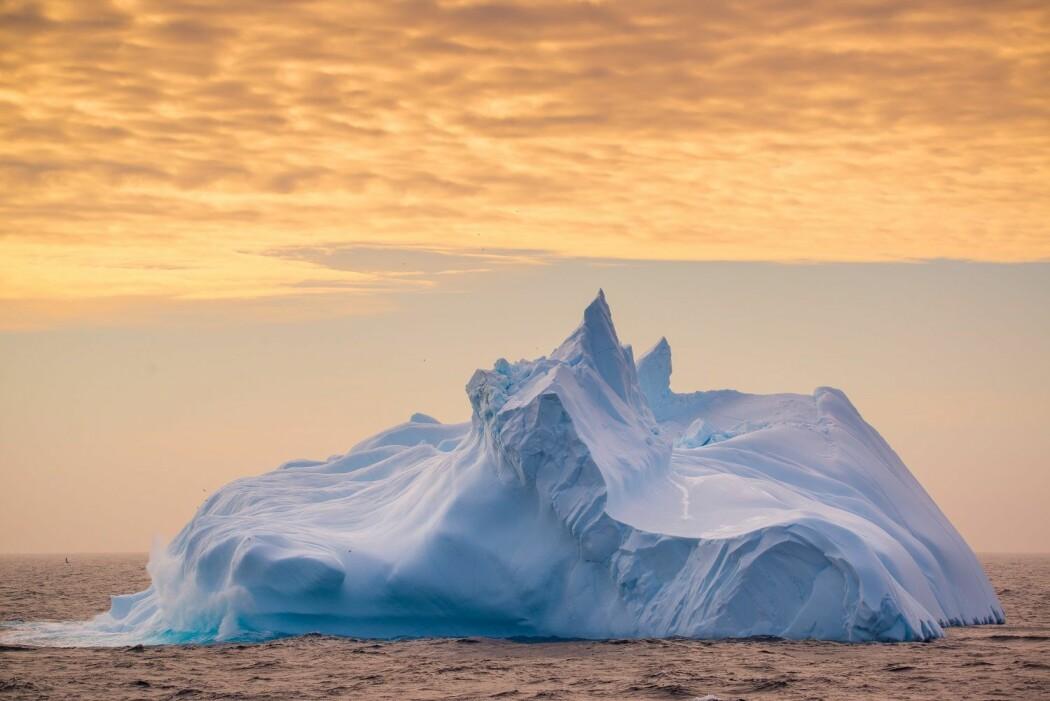 Isfjell kan ta mange ulike former, slik som denne «marengsen» utenfor Antarktis. (Foto: Andreas Wolden / Havforskningsinstituttet)