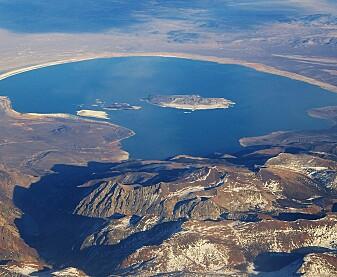 I Monosjøen bor det nesten ingen dyr. (Foto: Ron Reiring / Wikimedia commons CC BY SA 2.0)
