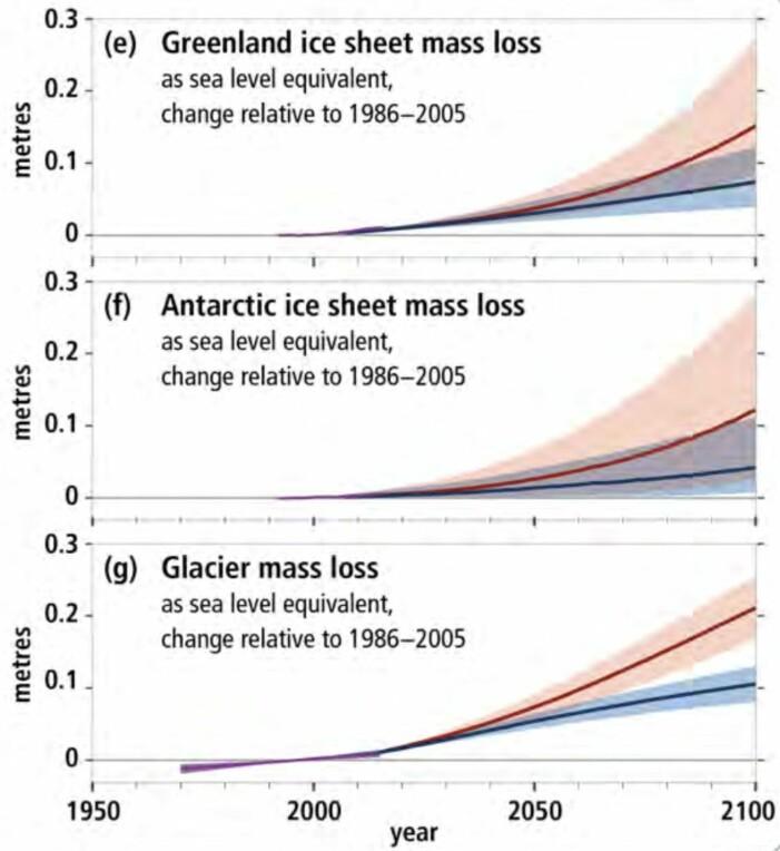 Forventet bidrag til havnivåstigningen i vårt århundre fra henholdsvis Grønland, Antarktis og isbreer andre steder, for lavt utslippsnivå (blått) og høyt utslippsnivå (rødt). (Fra IPCC SROCC, 2019)