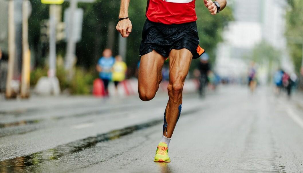 En viktig forskjell på en eliteløper og en mosjonist er hvor mye energi de bruker per steg. Her er det mye å lære av gode løpere. (Illustrasjon: sportpoint / Shutterstock / NTB scanpix)