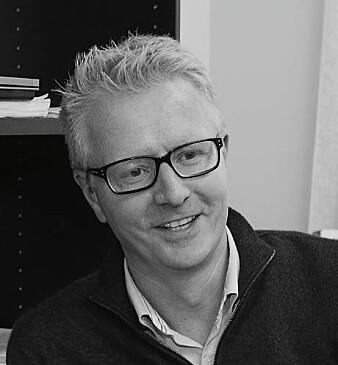 Professor Asle Fagerstrøm ved Høyskolen Kristiania har forsket på hva forbrukere foretrekker av elektronisk informasjon om varer i dagligvarebutikker.
