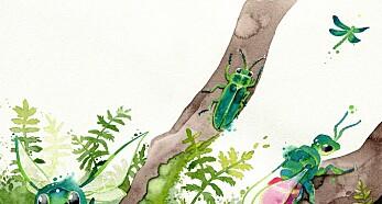Insektovervåking: Hvorfor veie veps, måle mygg og telle teger?