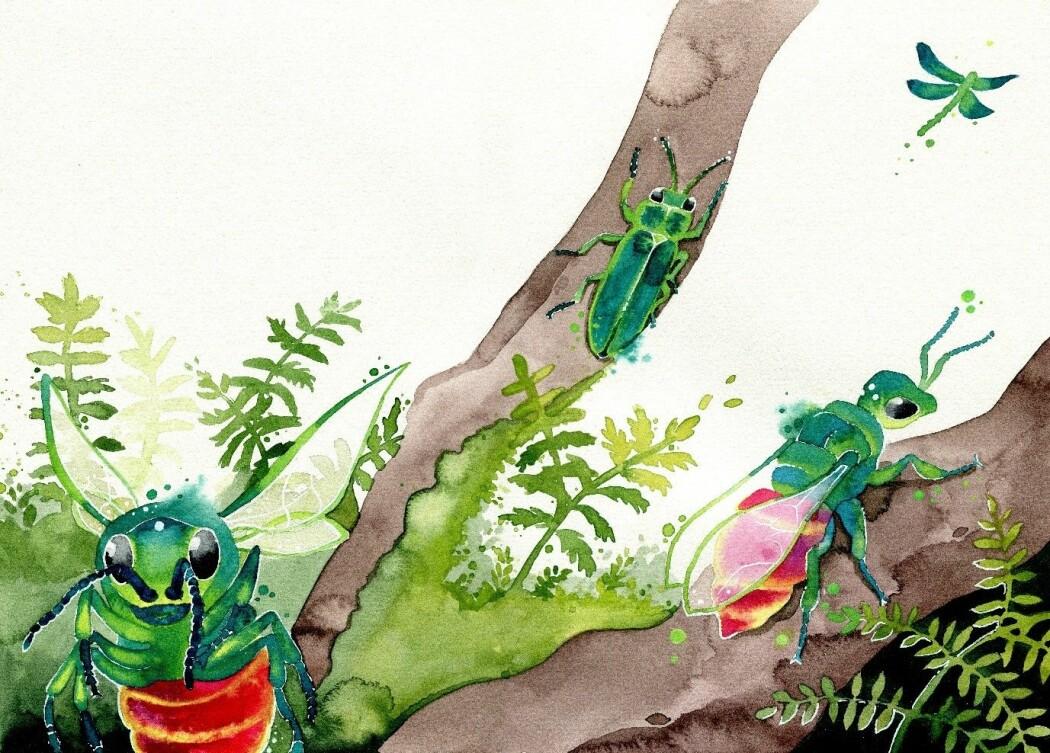 Gullveps og andre insekter. (Illustrasjon: Nina Marie Andersen, fra boka <i>Insektenes hemmeligheter</i>.)