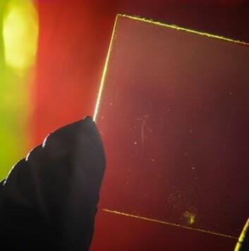 I bakgrunnen ser du ein av dei tradisjonelle, sjølvlysande og fargerike solarkonsentratorane. I framgrunnen ser du den nye typen sjølvlysande solarkonsentratoren som er gjennomsiktig. (Foto: G. L. Kohuth)