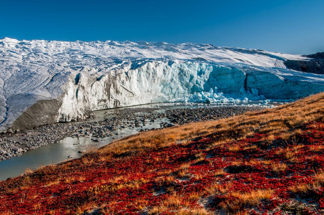 Det var mer is på Grønland for 80 år siden enn i dag, ikke mindre, ifølge forsker. Her ser du Russell-breen på Grønland. (Foto: PetrJanJuracka / Shutterstock / NTB scanpix)