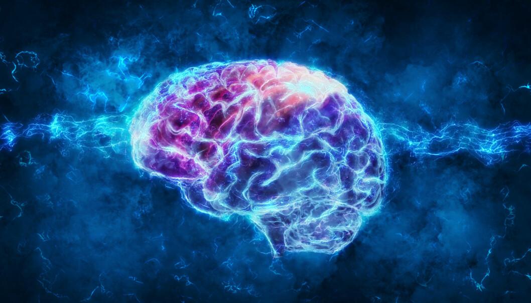 Deler av hjernen hos deprimerte krymper. Elektrosjokk øker volumet, ikke bare i disse delene, men i større deler av hjernen. (Foto: Shutterstock)