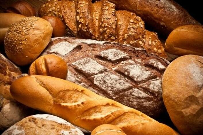 Stekt og brunet mat både smaker og lukter godt. Dessuten fører bruningsreaksjonen til at det dannes glyoksal, som mistenkes for å stå bak den økte kreftrisikoen hos diabetikere. (Foto: Shutterstock / Irina Tischenko)