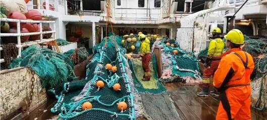 Ny kunnskap gir sjømatnæringene verktøy til å ta plastgrep