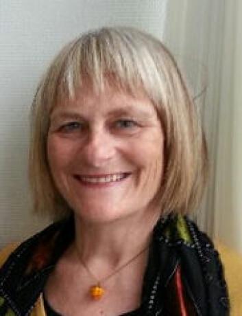 Kjersti Vik forteller at de eldre ikke alltid er så ensomme som hjelperne tror. (Foto: HiST)