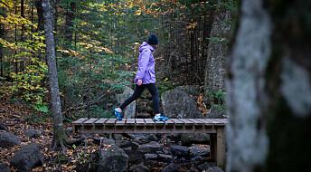 Eksperter anbefaler tur i skogen for å forebygge vinterdepresjon