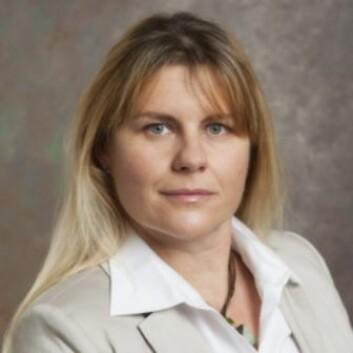 Professor Katalin Takacs Haynes har funnet sammenheng mellom griske ledere, kortvarige ansettelsesforhold og svake styrer. (Foto: University of Delaware)