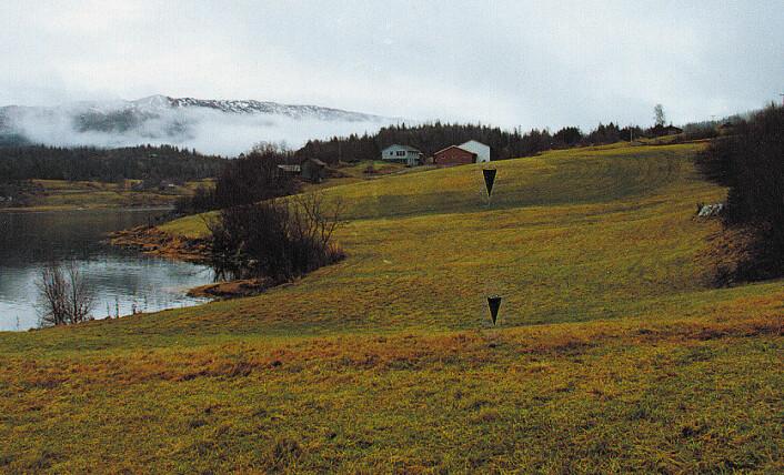 Dette området ble rammet av det største jordskjelvet i Skandinavia i historisk tid. Resultatet var blant annet flere skred. Bildet viser skredkanter ved gården Storstrand i Utskarpen-bukta i Ranafjorden. I nyere tid er jordene planert med bulldozer slik at skredkantene er mindre synlige enn i 1819. (Foto: Odleiv Olesen/NGU)