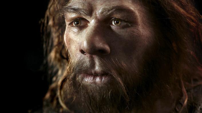 Neandertalerne er blant våre aller nærmeste slektninger blant utdødde fortidsmennesker. (Foto: Science Photo Library, NTB Scanpix)
