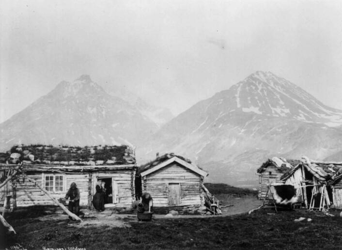 Folk i arbeid ved et lite gårdsbruk på Bensnes ved Ullsfjord i 1889. Dette er samme fjord som Selnes ligger ved, bare lenger sør. (Foto: Axel Lindahl /Norsk Folkemuseum (public domain))