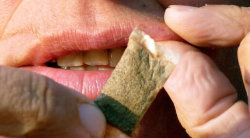 Snus kan gi økt risiko for visse sykdommer
