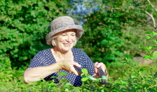 Fysisk aktivitet for et længere liv - Hvad skal der til?