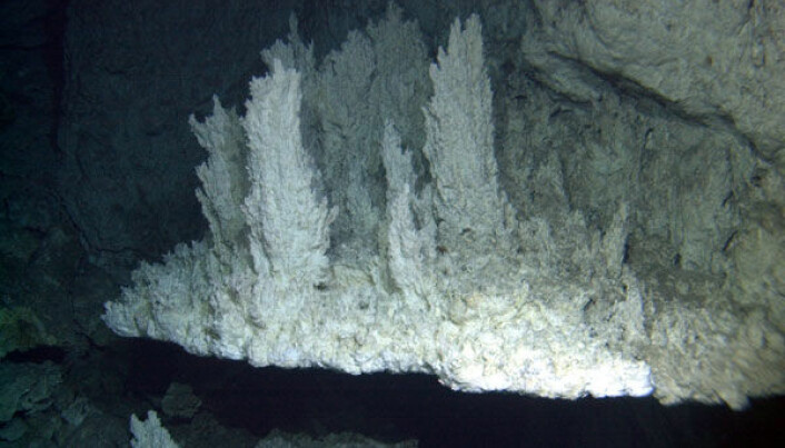 Lost City er et system med hydrotermiske skorsteiner i Atlanterhavet som har et spesielt miljø. (Bilde: University of Washington/Woods Hole Oceanographic Institution)