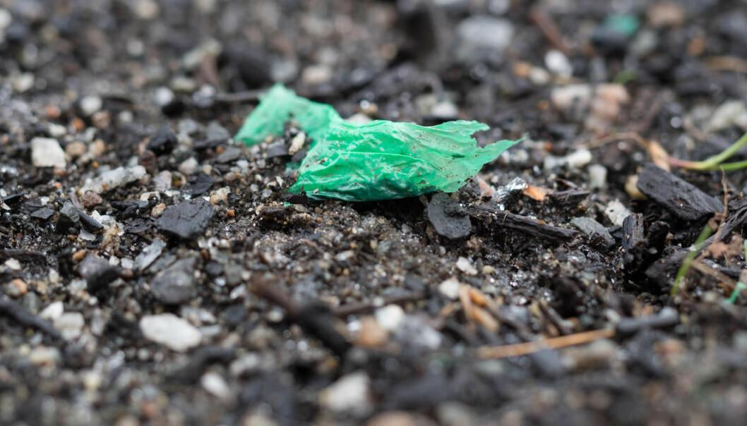 Mikroplast som havner i jorda, kan hope seg opp og renne ut i bekker og videre til havs. (Foto: Erik Joner)