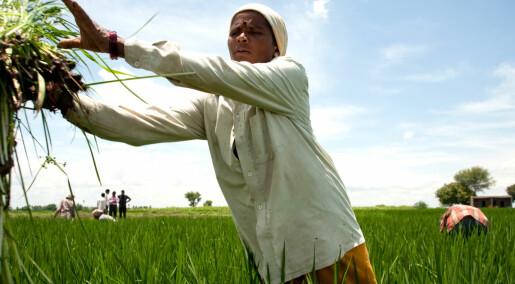Kvinnelige småbrukere skal opp og frem