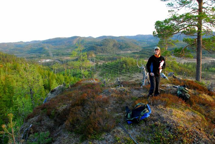 Gundula Bartzke i felt for å undersøke hvordan kraftlinjer påvirker elgen. (Foto: NINA)