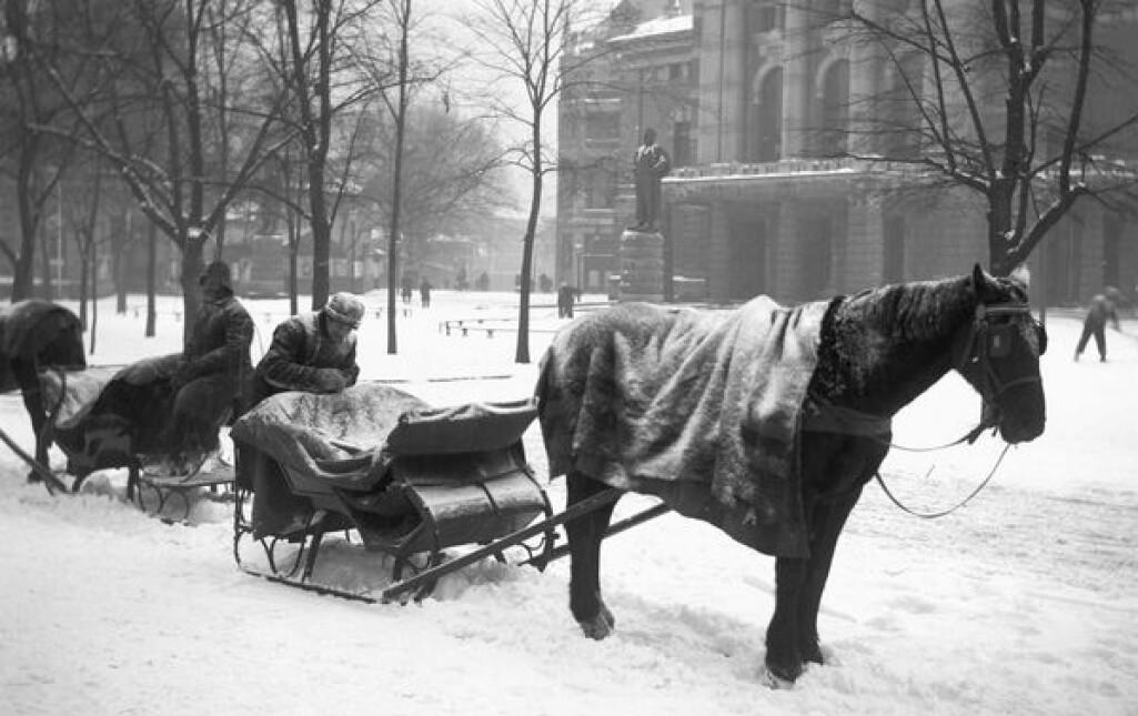 Slededrosjer står klare ved Nationaltheatret en vinterdag i 1904. Her har hestene fått et teppe over ryggen som beskyttelse mot kulde og snø. Dyrebeskyttelsen drev informasjonsarbeid for å bedre hverdagen for arbeidshestene. (Bilde: Anders Beer Wilse/ Oslo Museum)