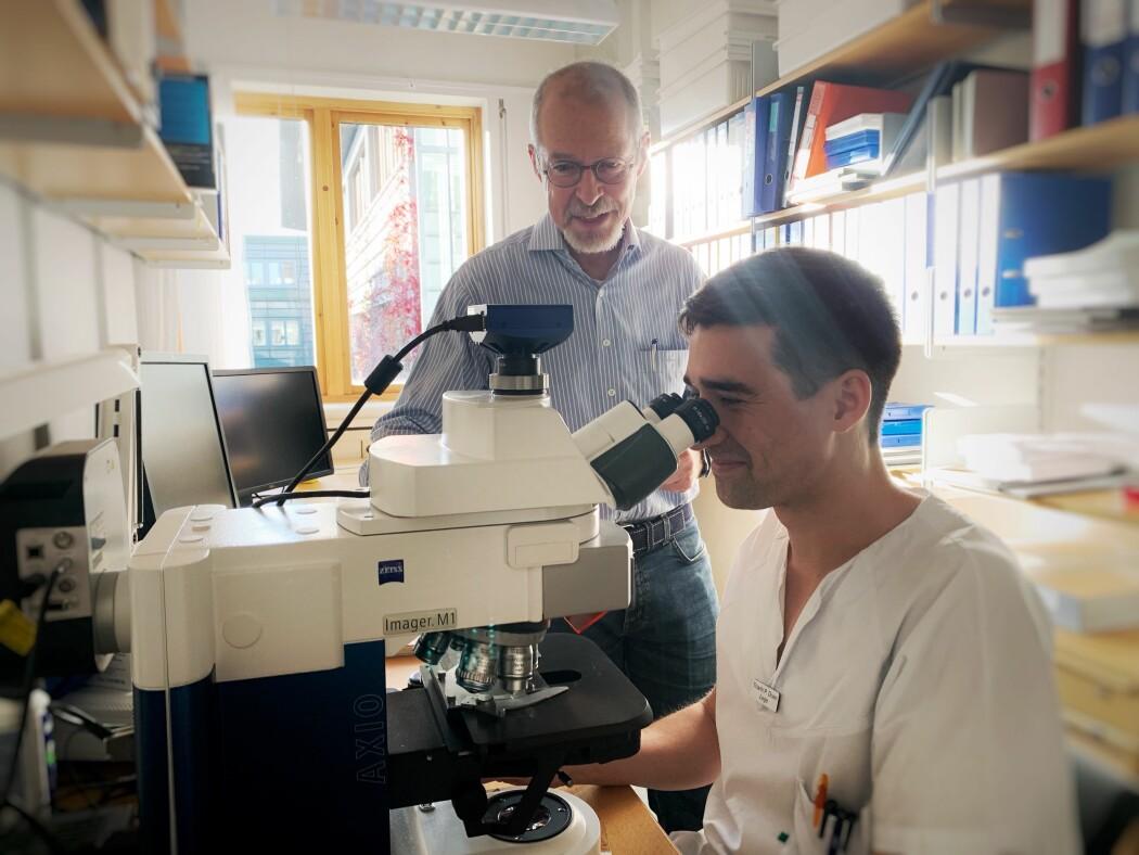 Forskere har funnet en informasjonssentral i hjernen. Oppdagelsen kan hjelpe de som jakter på Alzheimers-svar.