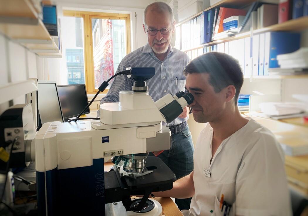 Thanh Pierre Doan (ved mikroskopet) fant ut at modellen til veilederen sin Mino Witter (bak mikroskopet) var feil. (Foto: Kavli Institute for Systems Neuroscience)