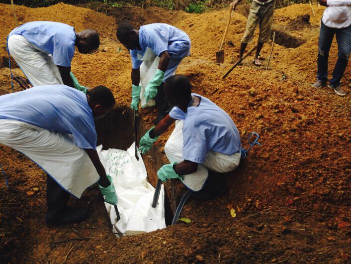 Ebola-smittet begraves i Sierra Leone. Ebola-utbruddet i Vest-Afrika har til nå kostet flere enn 1300 mennesker livet. Foto: Tarik Jasarevic, Reuters/Scanpix