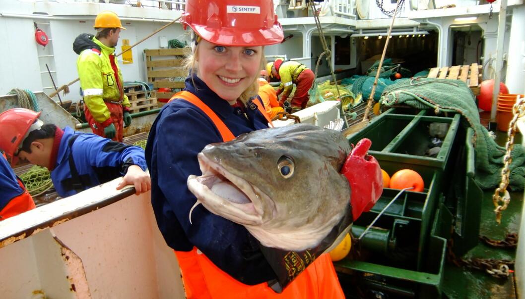 - Skal vi konkurrere med lavkostland, må vi utnytte vårt viktigste fortrinn, nemlig nærheten til råvaren, mener Ida Aursand i Sintef Fiskeri og havbruk.  (Foto: Sintef)