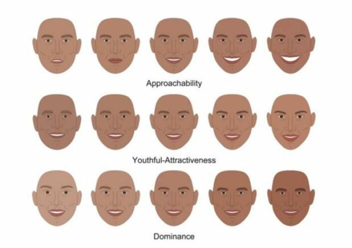 De amerikanske forskerne har konstruert ansikter som de kunne forutsi hvordan testpersoner ville reagere på. På bildet kan du se hvordan bestemte trekk får en person til å se mer eller mindre dominerende, attraktiv eller pålitelig ut. (Foto: (Ill.: PNAS))