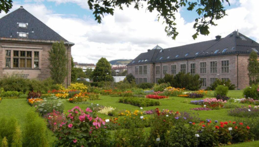 <p>Bygningene ved Naturhistorisk museum på Tøyen.</p> (Foto: Per E. Aas/NHM/UiO)