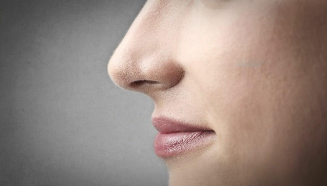 Nesen forteller mer om deg enn du kanskje tror. (Foto: Microstock)