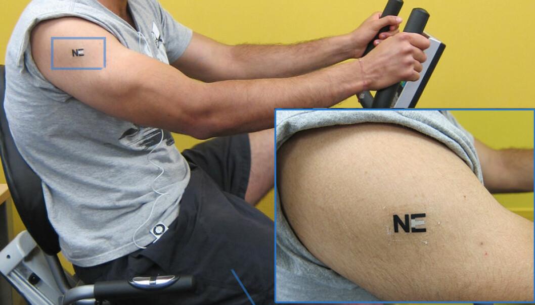 En biosensor som klebes til huden, som en klebe-tatovering, registrerer nivået av melkesyre i svette under trening. Et biobatteri som bruker denne teknologien kan i framtida drive elektronikk, ifølge forskerne fra University of California San Diego. (Foto: Joe Wang, Americal Chemical Society)