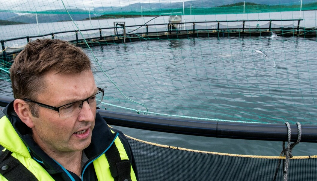 – Vi tilførte moderate mengder lus på fisken i de lukkede merdene. Disse forsøkene viste at det ikke skjedde noen reproduksjon av lus, forteller Arve Nilsen fra merdkanten. (Foto: Simon Aldra).