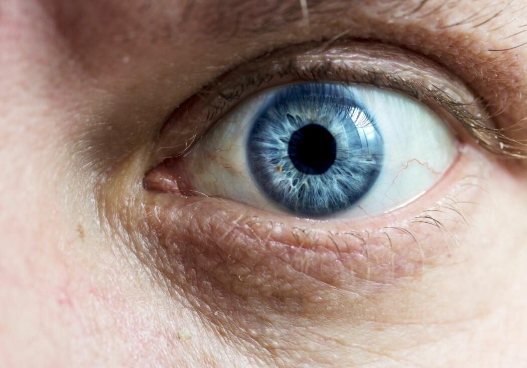 – Det å bli observert påvirker faktisk handlingene våre. Hvis noen kan se oss, mister vi noe av friheten vår, sier norsk forsker. (Illustrasjonsbilde: kzww, Shutterstock, NTB scanpix)