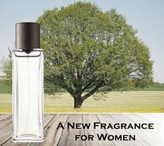 Sommerbakgrunn ga parfymen mindre luksuspreg. (Foto fra Journal of Consumer Psychology)