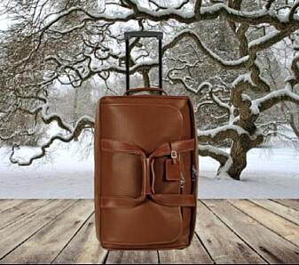 Statusbevisste deltakere foretrakk en koffert i vinterlandskap fremfor samme koffert med sommerbakgrunn. De kvalitetsbevisste syntes det var hipp som happ. (Foto: Journal of Consumer Psychology.)