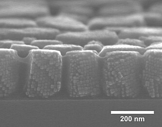 This scanning electron microscopy image clearly shows the 12 nm nanocubes assembled into supercrystals. (Photo: Verner Håkonsen/NTNU)