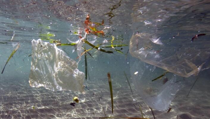 Dette bildet ble tatt i mai 2019 og viser plastsøppel som flyter rundt i havet i Marseille. Hvor denne plasten ender opp før den brytes ned og om den brytes ned er det ingen som vet. Foto: Boris HORVAT / AFP